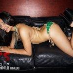 Pt's Mens Club Dallas Texas Best Stripclub strippers (70)